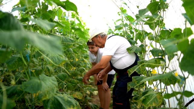Junge mit Großvater Gartenarbeit – Video
