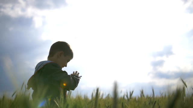 Boy with phone rejoices in the field, boy is very happy on a background of video