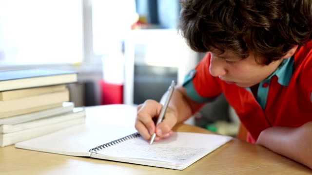 Boy writing in homework journal video
