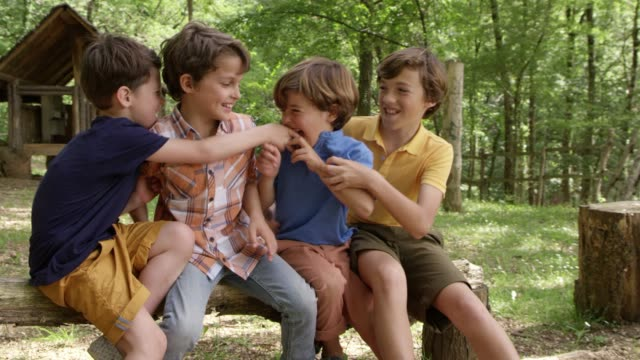 boys tickling while sitting on log in forest - предподростковый возраст стоковые видео и кадры b-roll