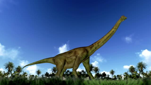 Brachiosaure cycle marche, boucle - Vidéo