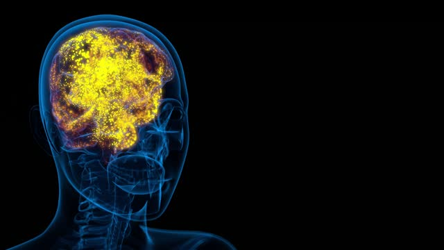 Brain activity - concept of mental neural impulses in human brain, mind training concept isolated on black - UHD 4K 60fps medical background animation