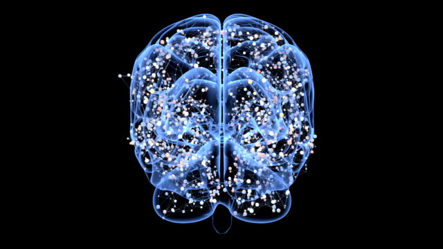 Brain and centers of an activity video