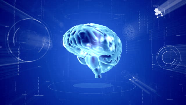Brain animation. Medical video background Scientific instruments placed as a background in the human Brain. genius stock videos & royalty-free footage
