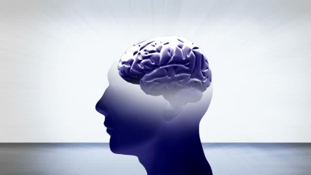 brain loop video