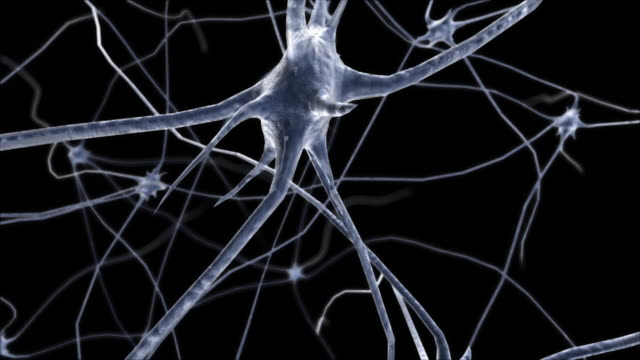 Brain neurons with synapses. Image generated in 3D video