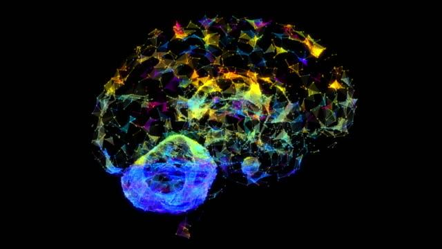 Brain Plexus - vídeo