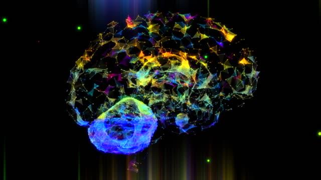 beyin pleksus - biyomedikal animasyonu stok videoları ve detay görüntü çekimi