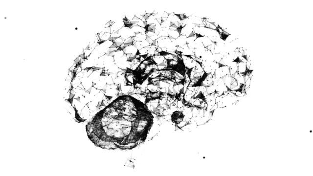 Brain Plexus video