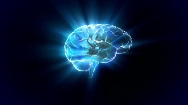 brain rotate flare video
