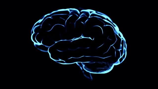 Brain Scan Loopable
