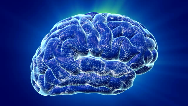 Brain Waves video