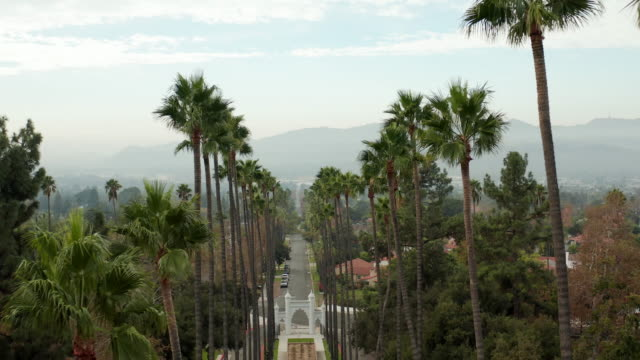 Brand Park in Glendale, California - 4k Drone Video Aerial drone footage of the palm tree lined street and Brand Park in Glendale California. b roll stock videos & royalty-free footage