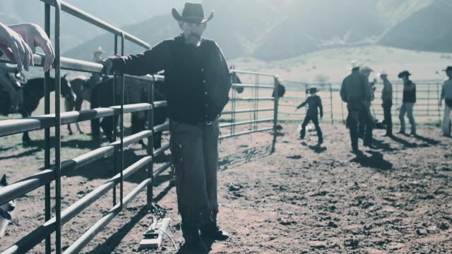 vídeos de stock e filmes b-roll de branding cattle in utah - dureza