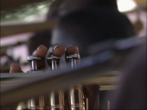 Brass section. video