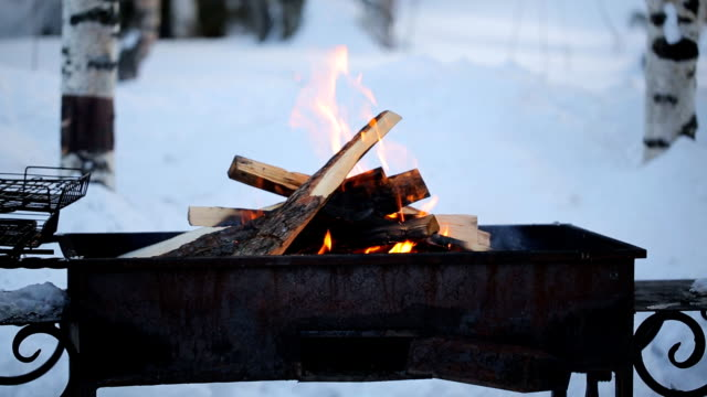 Brazier with burning fire in winter woods on a background of birches video