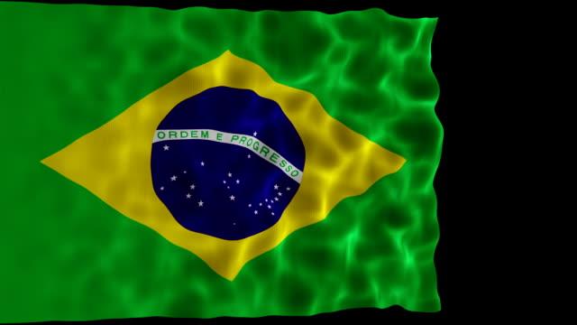 Bandeira do Brasil - vídeo