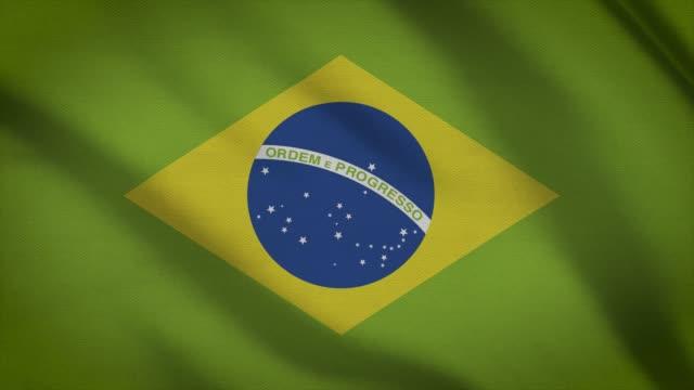 brasilien flagga - brasilien flagga bildbanksvideor och videomaterial från bakom kulisserna