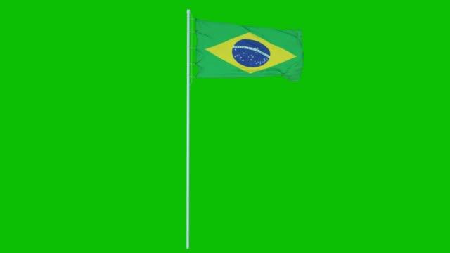 brasilien flagga vinka på vind på grön skärm eller chroma nyckel bakgrund. 4k-animering - brasilien flagga bildbanksvideor och videomaterial från bakom kulisserna