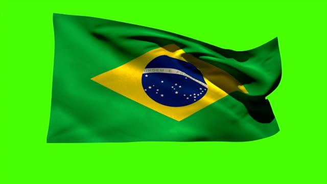 brazil national flag blowing in the breeze - brasilien flagga bildbanksvideor och videomaterial från bakom kulisserna