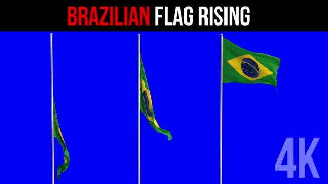 Bandeira Brasileira - vídeo