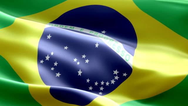 brasiliansk flagga - brasilien flagga bildbanksvideor och videomaterial från bakom kulisserna