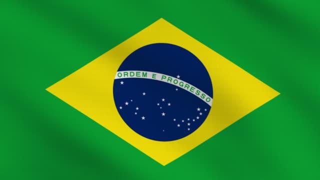 Brazilian flag video