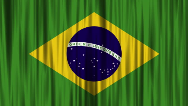 Brazilian National Flag (Loopable)