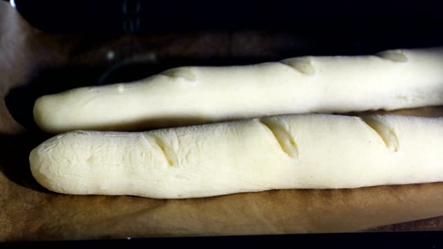 bread being baked - pane forno video stock e b–roll
