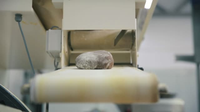 bröd produktionslinje. scen. mat fabriken transportband. brödlimpa industrins linje på livsmedel växt. limpa bröd på transportband - biltransporttrailer bildbanksvideor och videomaterial från bakom kulisserna