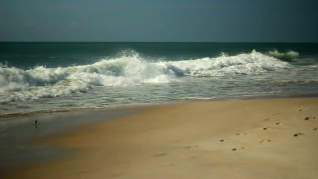 Breaking Waves on Beach video
