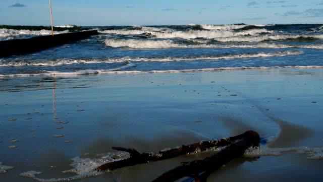 vídeos de stock, filmes e b-roll de ondas breakwater.crashing. gaivota. massas de areia levado pelas ondas. tempo bonito e luz perfeita. vista da costa do oceano. versão 9 - países bálticos