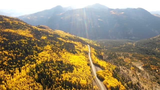 vídeos de stock, filmes e b-roll de vistas deslumbrantes do drone da floresta de aspen - condado de pitkin