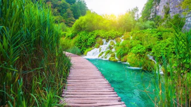 steadycam: breathtaking  nature in plitvice lakes national park - национальный парк плитвицкие озёра стоковые видео и кадры b-roll