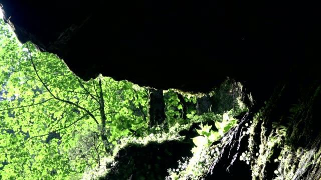 breitachklamm, canyon, erosion, kontrast, vegetatives wachstum, vielfalt, allgäu, bayern, tourismus, wunder der natur, 4k - kontrastreich stock-videos und b-roll-filmmaterial