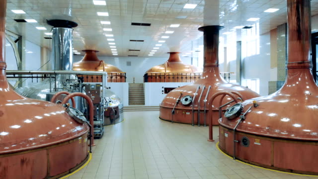 brewery hall with copper tanks in it - vodka video stock e b–roll