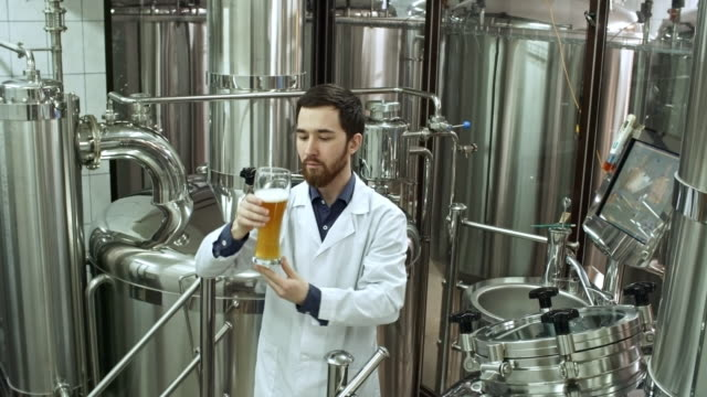 Brewery Worker Tasting Fresh Beer Professional brewery worker in lab coat examining glass and trying freshly brewed beer at brewing factory brewery stock videos & royalty-free footage