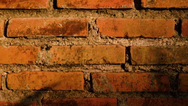 Brick Wall In Sunset Light Tilt Shot