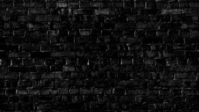 brick wall - mattone video stock e b–roll