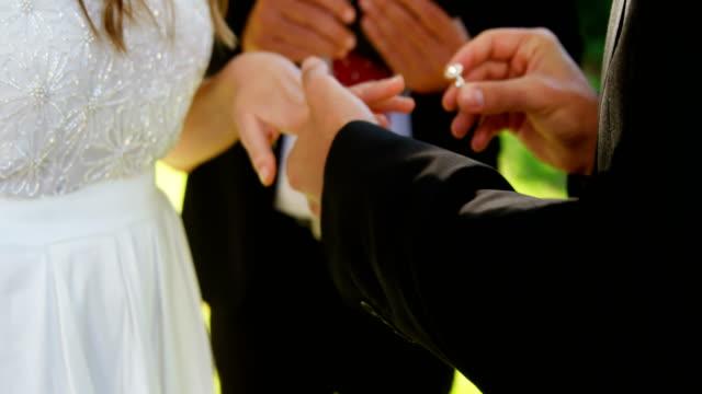 花嫁と花婿の結婚式の日にリングの交換 4 k 4 k - 指輪点の映像素材/bロール