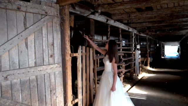 Bride with horse in horseband video