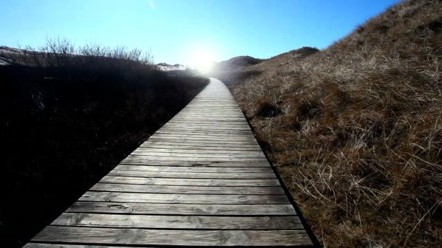 Bridge through the dunes video