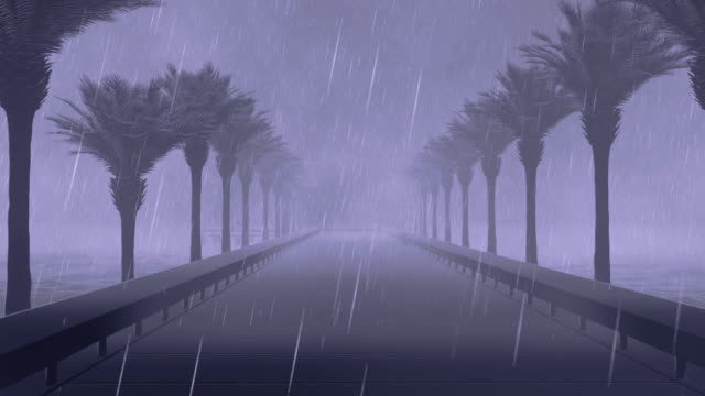 Bridge with palm trees, ocean storm with lightnings video