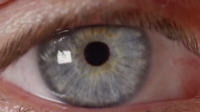 SLOW MOTION CLOSE UP: Bright blue male eye looking into camera lens and blinking video