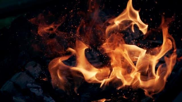 bright bonfire with fire and ash close up - falò spiaggia video stock e b–roll