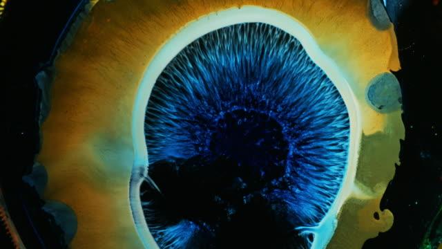ljus färgglad reaktion med flytande bläck / färg droppe fläck på vitt papper bakgrund / oljeblödning blommar / big bang explosion av supernova solstjärna membran - akrylmålning bildbanksvideor och videomaterial från bakom kulisserna