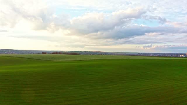 vídeos de stock e filmes b-roll de bright green field with beautiful clouds - linha do horizonte sobre terra