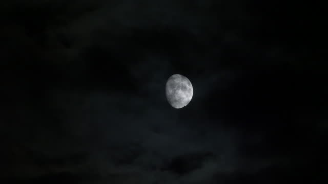 Bright Moon on the horizon. Moonlight and fast moving clouds. Moon with extremely fine detail, moving through the sky and some fluffy clouds passing by. moon stock videos & royalty-free footage