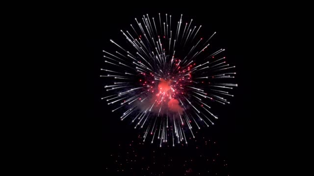 Bright multicolored flashes of fireworks in the night sky on a black background. Festive event. Closeup. The concept of the celebration. 4K. Bright multicolored flashes of fireworks in the night sky on a black background. Festive event. Closeup. The concept of the celebration. 4K. petard stock videos & royalty-free footage