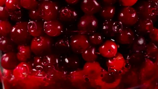 Bright Red Berries in Blender video